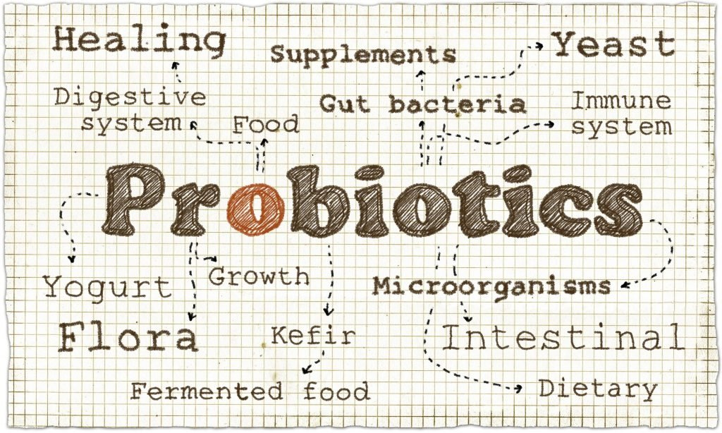 Cosa sono i Probiotici