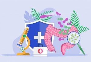 Prebiotici, probiotici e il microbiota intestinale